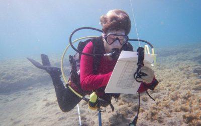 מיפוי פסולת ימית 4